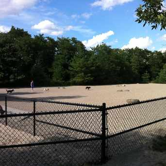 10 Local Dog Parks In The Greater Boston Area by Kadilak Realty Group